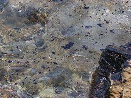 Ölverseuchtes Meerwasser in der Caldera. (c) Tobias Schorr