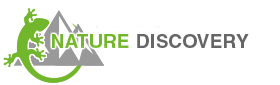 Nature Discovery Tours 2015